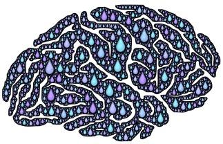brain-962650_1920