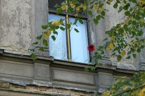 window-276922_1920